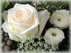 Blumen Lieferservice